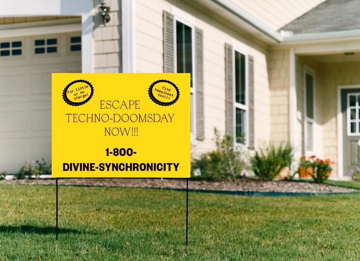 Divine Synchronicity 7