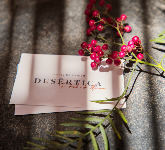 Desértica Hotel 12