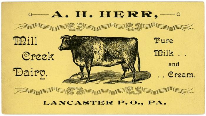 A. H. Herr, Mill Creek Dairy, Lancaster, Pa.