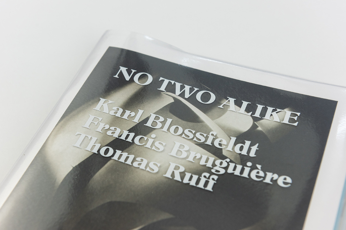 No Two Alike 1