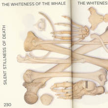 <cite>The whiteness of the Whale</cite>