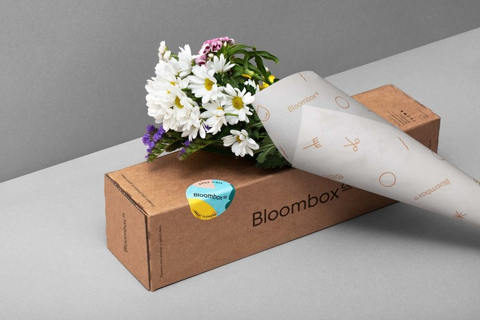 Bloombox Co 6