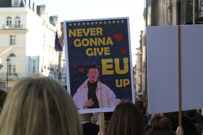 """""""Never Gonna Give EU Up"""" Brexit protest placard"""