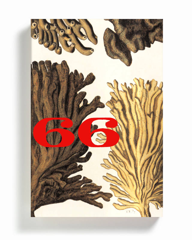 """The 3rd volume uses early 18th century hand-colored illustrations from Albertus Seba's Cabinet of Natural Curiosities, inspired by one of the character's obsession with seaweed."" — Strick"