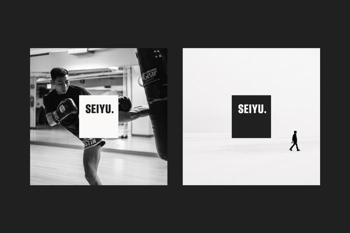 Seiyu brand identity 1