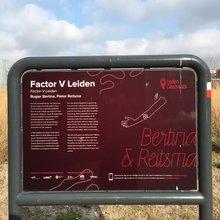 Leiden Discoveries