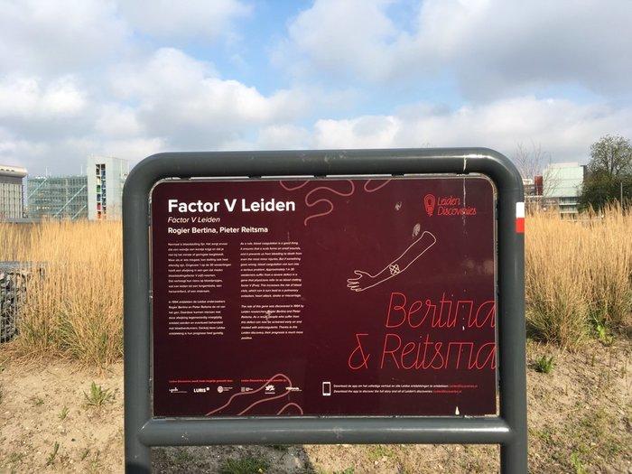 Leiden Discoveries 2
