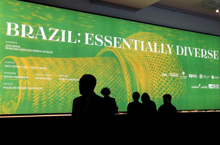 Brazil. Essentially Diverse 2
