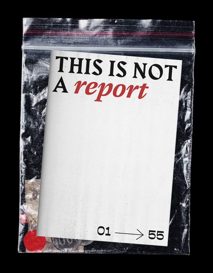 This Is Not a Report 2