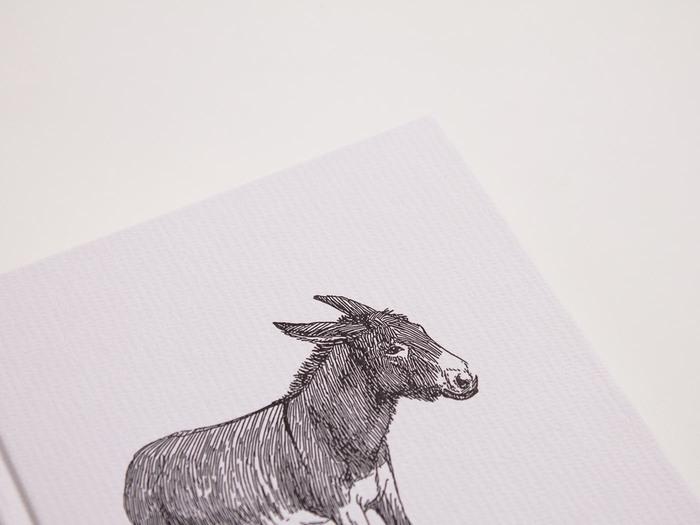 Metarmorphosen oder Der Goldne Esel 3