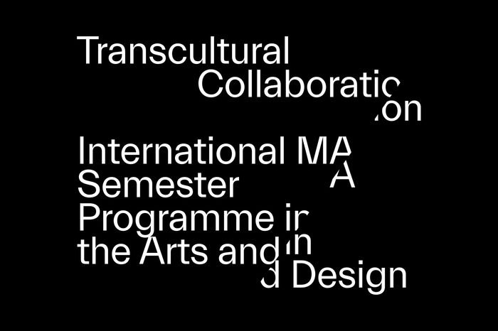 Transcultural Collaboration 1