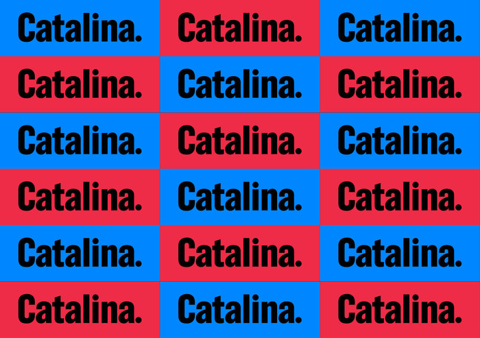 Catalina Cruz 2018 campaign 1