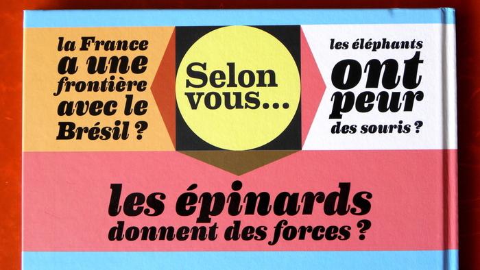Le Livre des Vrai / Faux by Gérard Dhôtel and Benoît Perroud 3