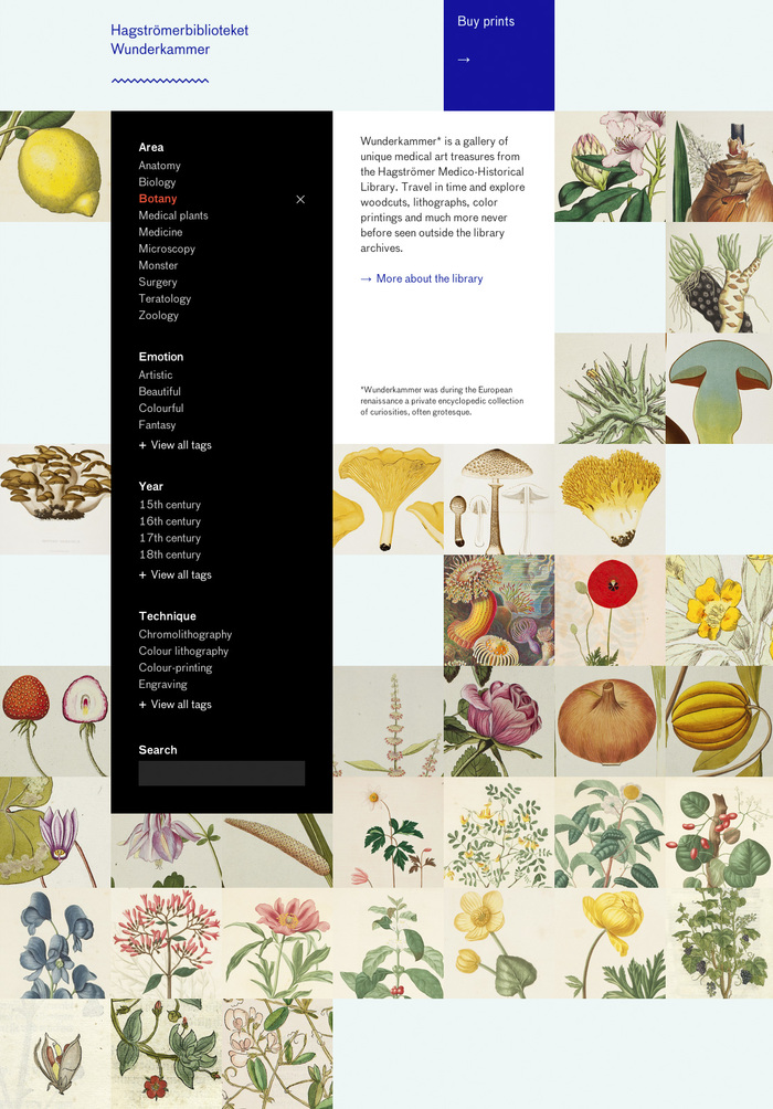 Wunderkammer website 1