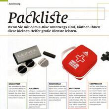 <cite>ElektroBIKE</cite> Magazine