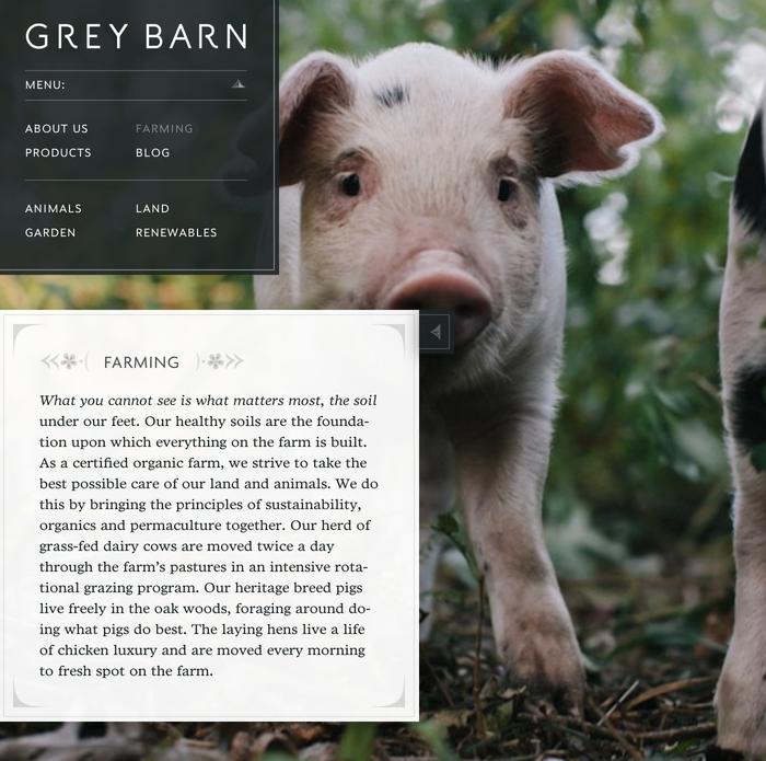 The Grey Barn and Farm 2