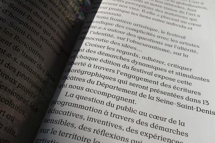 Rencontres Chorégraphiques de Seine-Saint-Denis 2019 5