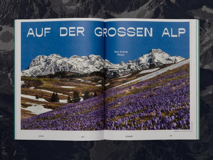 ALP magazine 6