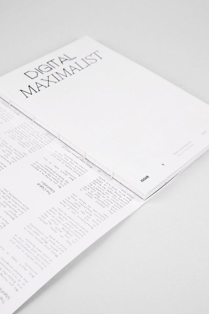 Digital Maximalist 3