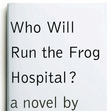 <cite>Who Will Run the Frog Hospital?</cite> by Lorrie Moore