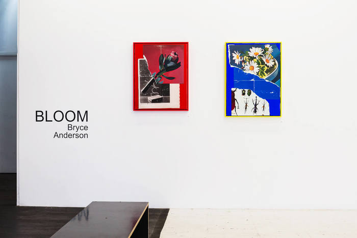Bloom – Bryce Anderson at China Heights 4