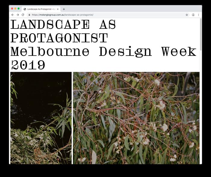 Landscape as Protagonist 4