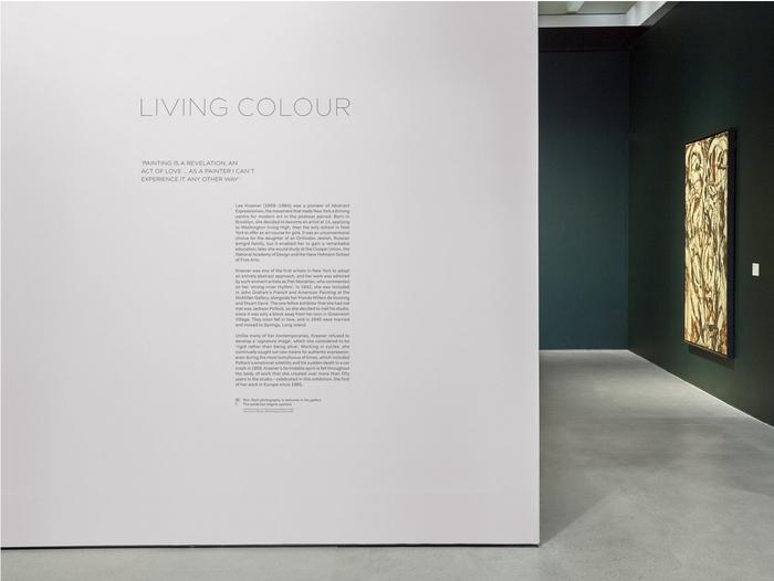 Lee Krasner: Living Colour 3