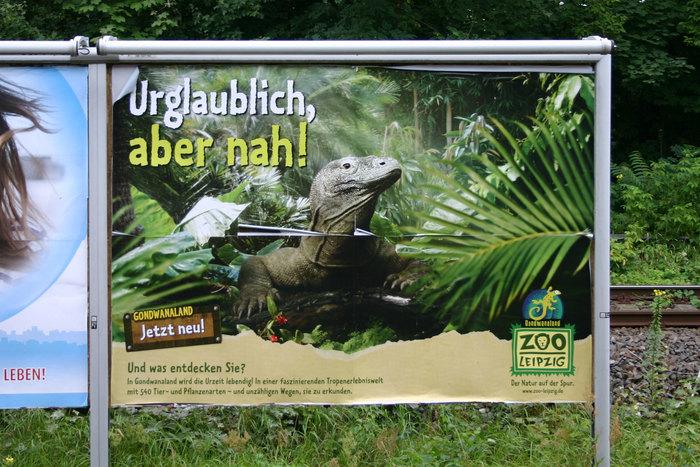 Zoo Leipzig 4