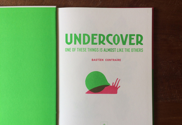Undercover and Hide and Sneak book series 3