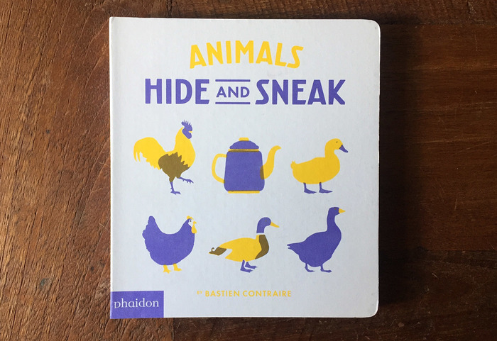 Undercover and Hide and Sneak book series 4
