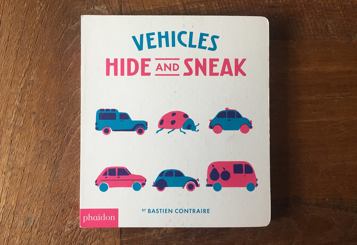 Undercover and Hide and Sneak book series 5