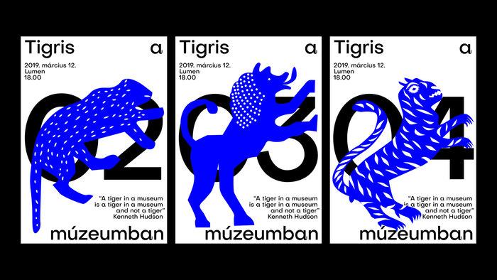 Tigris a múzeumban 4