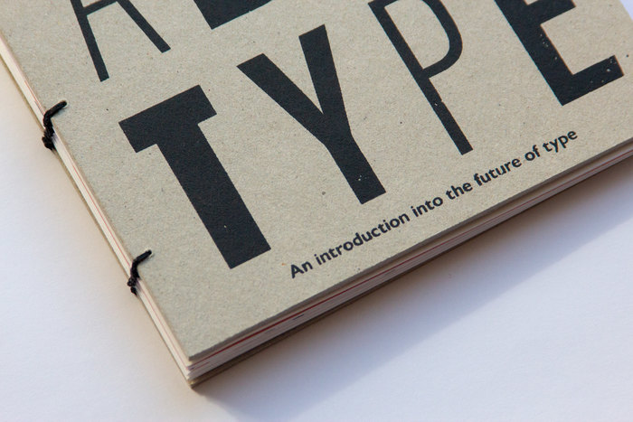Variable Type. An Introduction into the Future of Type 1