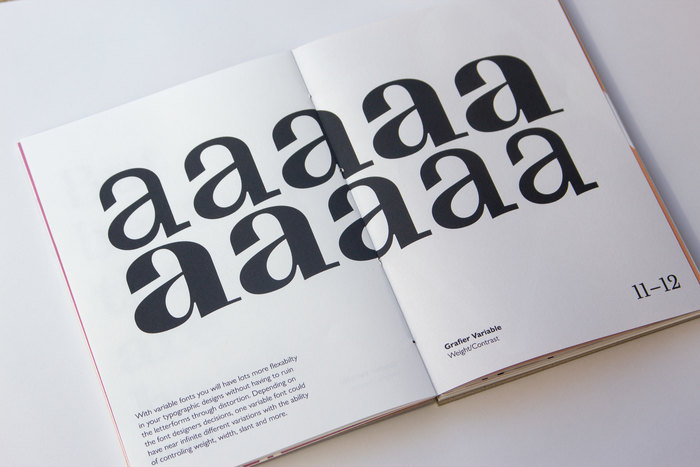 Variable Type. An Introduction into the Future of Type 2