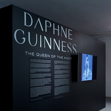 <cite><span>Daphne Guinness: The Queen of the Night</span></cite>