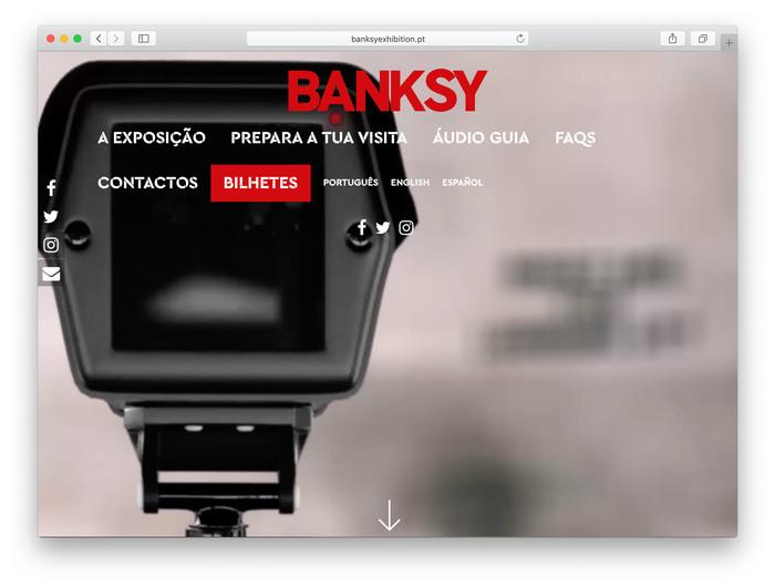 Banksy: Genius or Vandal? 2