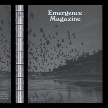 <cite>Emergence Magazine</cite> Vol. 1, 2019