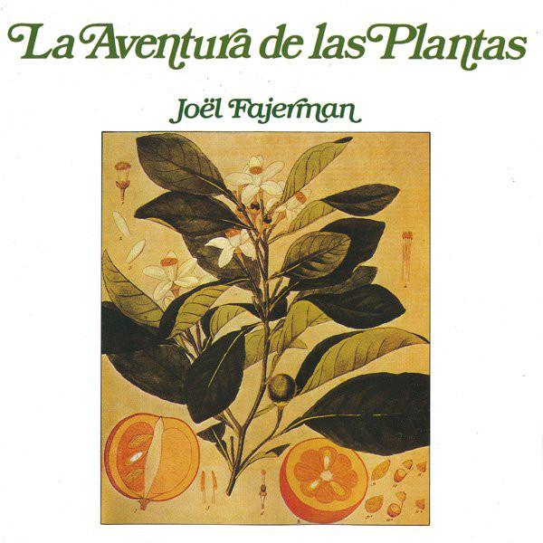 Book cover featuring Italia.