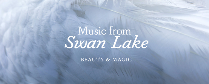 Solid Dapifer in roman and italic styles for the Swan Lake graphics.