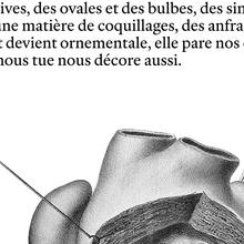 <cite>Traversée anatomique</cite>