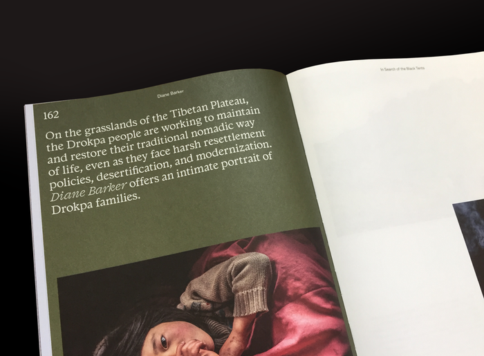 Chapter introductions are, for most, set in Italian Old Style, with Fragen Italic for the name of the featured artist/writer. Folio set in Rosart, running title in GT America.
