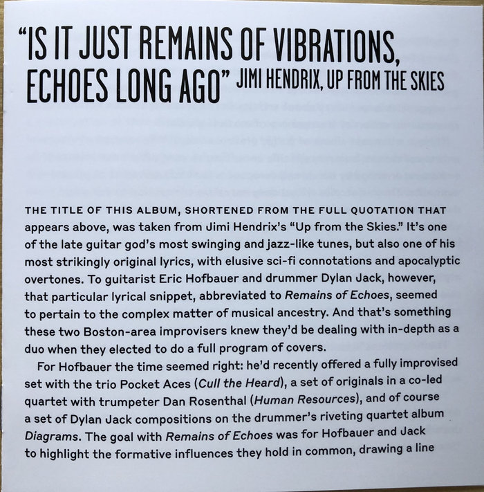 The liner notes by music historian David R. Adler use a gutsy, fresh pairing of Garage Gothic with Styrene B.
